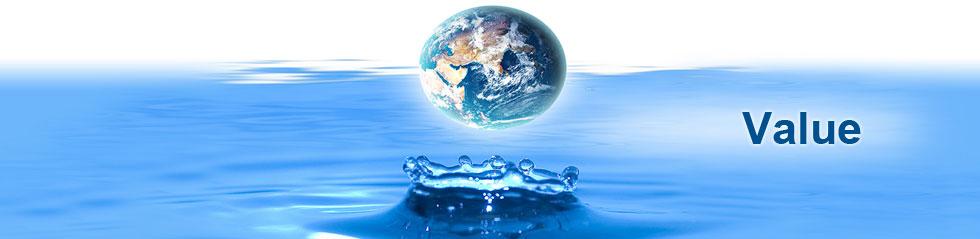 Environmental Value